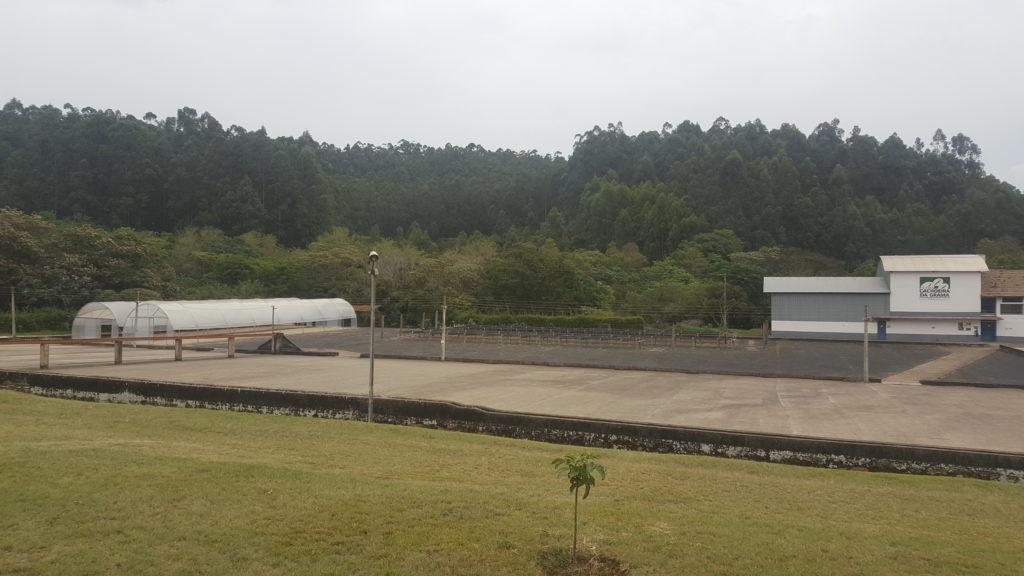 Fazenda Cachoeira Da Grama