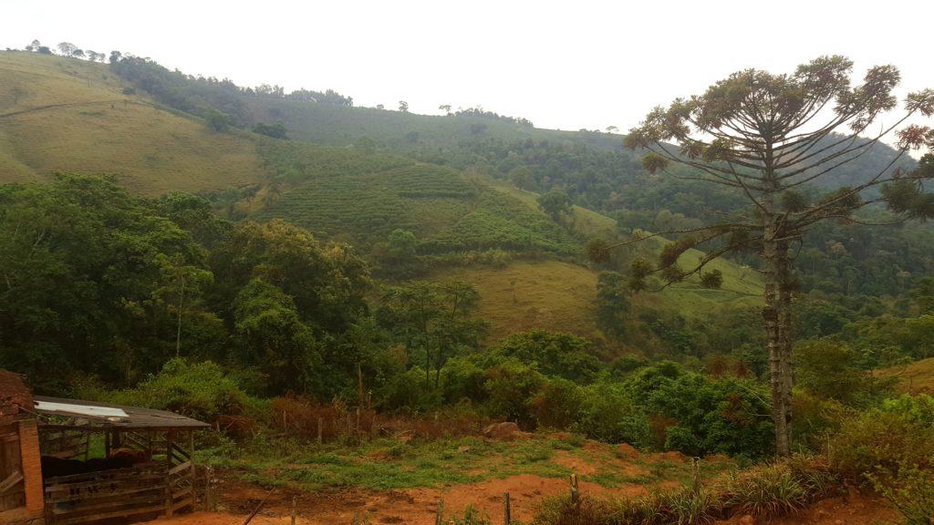 Fazenda Inglatera