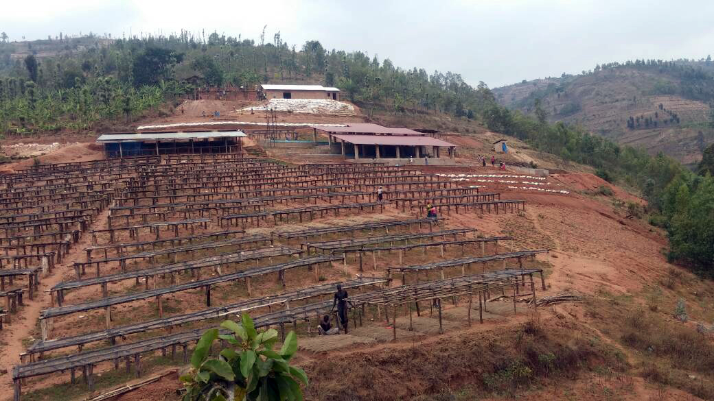 Raised african coffee drying beds
